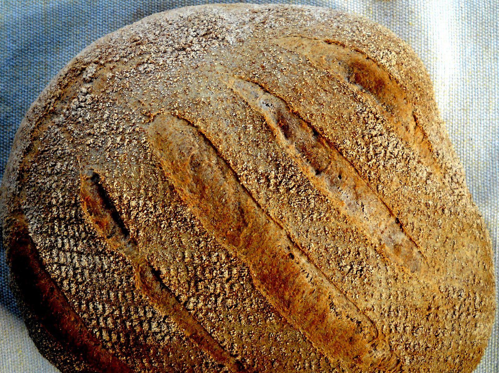 pan integral con masa madre facil